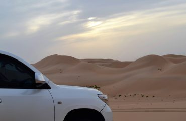 Dubai-Safari-Plus-Sunrise-Safari-Dubai